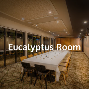 eucalyptus-room-buttonv2